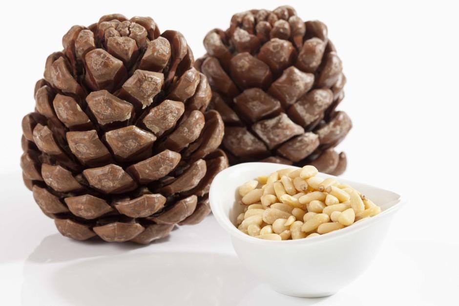 pine_nut